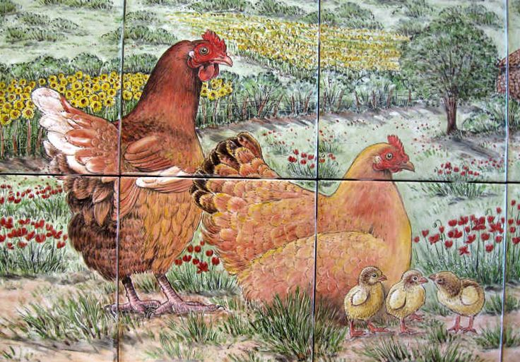 """""""Cindy's French Farmhouse and Chickens"""" chickens close-up by Julia Sweda."""