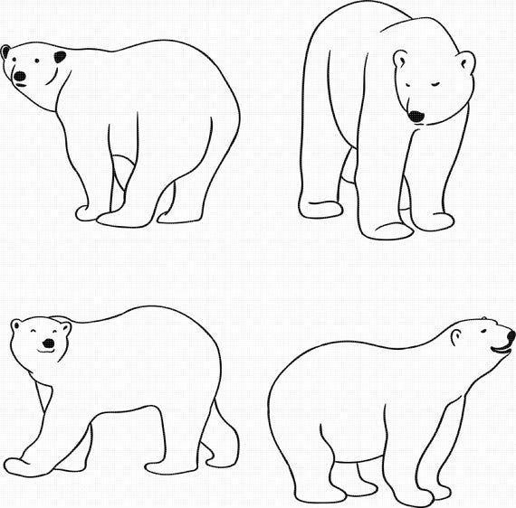 Polar Bear Svg Eps Png Dxf Clipart For Cricut And Etsy Polar Bear Art Polar Bear Drawing Bear Template
