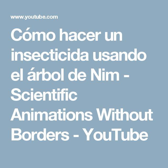 Cómo hacer un insecticida usando el árbol de Nim - Scientific Animations Without Borders - YouTube