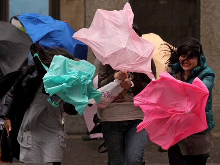 Woman struggling with an umbrella google search black