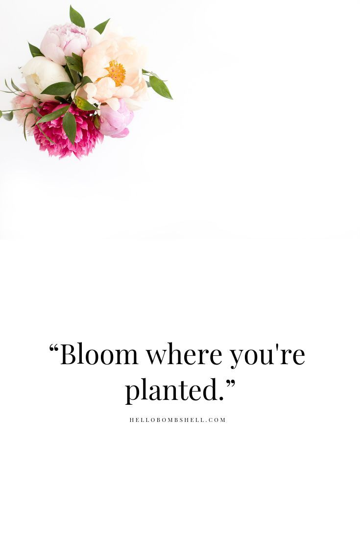 Bloom Where You Re Planted Welcome To A Personal Development Self Improvement Motivational Quotes For Women Inspirational Quotes Inspiring Quotes About Life