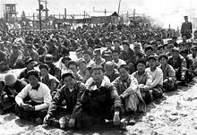 Prisonniers de guerres nord-coréens et chinois dans un camp à Pusan en avril 1951.