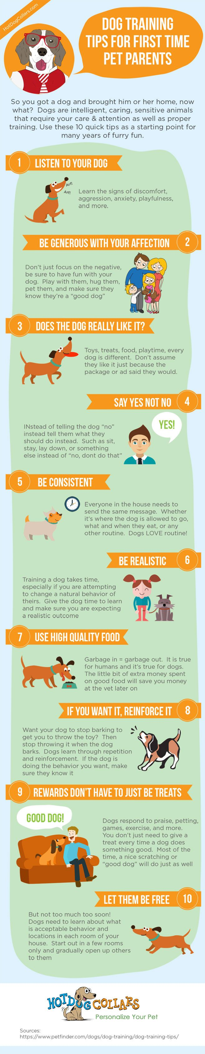 Use these 10 dog training tips from Hot Dog Collars for first time fur parents as a starting point for many years of furry fun!
