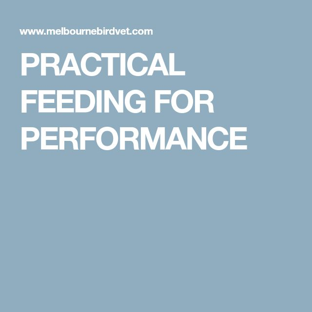 PRACTICAL FEEDING FOR PERFORMANCE