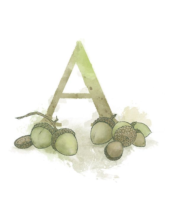 Letter A Acorn Nature Alphabet Initial by LaPetiteMascarade, $20.00