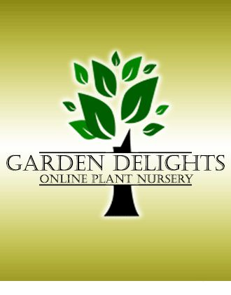 Garden Delights Online Plant Nursery