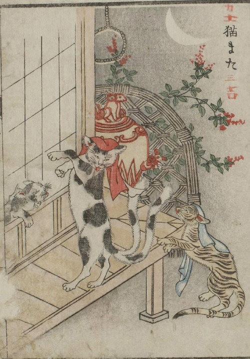 """Toriyama Sekien, Bakeneko (Nekomata),From Gazu Hyakki Yako(Illustrated Night Parade of a Hundred Demons),ca. 1776, Woodblock Print  From the post, """"Nekomata the Split Tailed Cat"""", on the blog,Hyakumonogatari Kaidankai,    Toriyama sekien's picture of a nekomata from his Gazu Hyakki Yako (画図百鬼夜行; The Illustrated Night Parade of a Hundred Demons) is also tinged with humor. His illustrations shows three cats, one a nekomata with a split-tale and two regular cats. The nekomata appears t"""