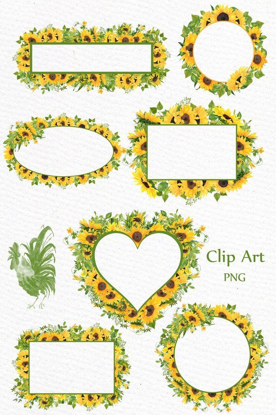 "Yellow Drawing Room: Sunflower Watercolor Frames Clipart: ""SUNFLOWER CLIPART"