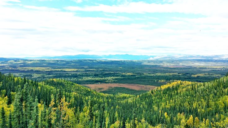Tintina Trench #DawsonCity #AlmostThere #WhatAView #Wow #VisitDawson #IconicView #Endless #Wilderness #Trees #Spruce #Birch #MountainRange