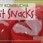 Homemade Healthy Kombucha Fruit Snacks