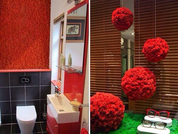красный мох в декоре - Поиск в Google