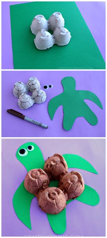 Egg Carton Turtle Craft for Kids!   CraftyMorning.com