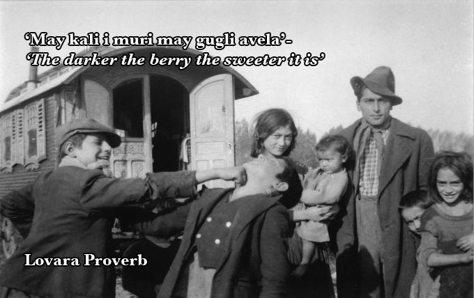 The Gypsy S Got Quotes: 519 Best Images About Romany Gypsies & Travellers On