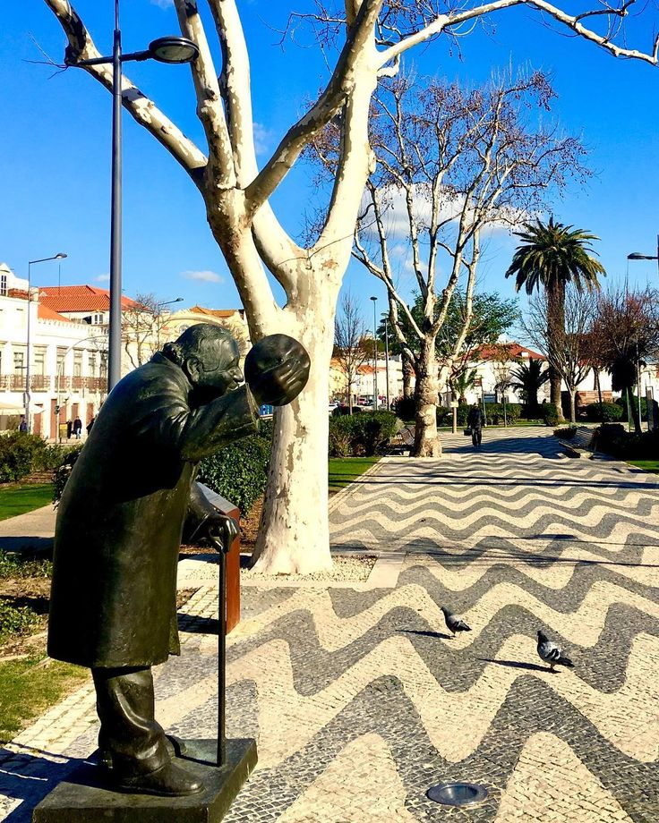 Setúbal   #lisboa #portugal #lisboalive #visitlisboa #visitportugal #viagem #travelblog #blogmochilando #missaovt #destinosimperdiveis #loucosporviagem #queroviajarmais #essemundoenosso #viajoteca #trippics #bestvacations #bestplacestogo #travelandlife #livetravelchannel #liveoutdoors #wonderful_places #tripadvisor #lonelyplanet #travelawesome #thebestdestinations #Instagram #instagramers #instagood #instadaily