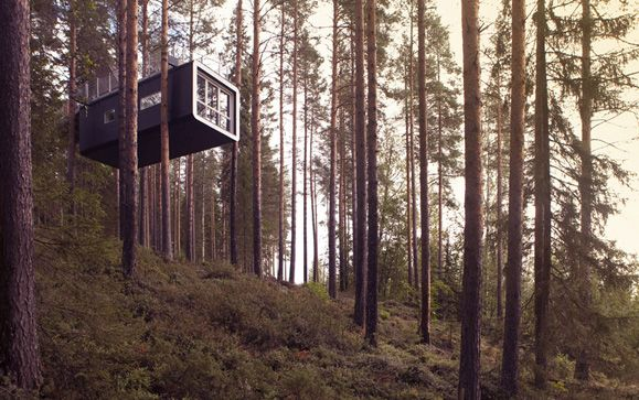 Out in the Swedish hinterlands, the Treehotel is reinventing life in the forest.
