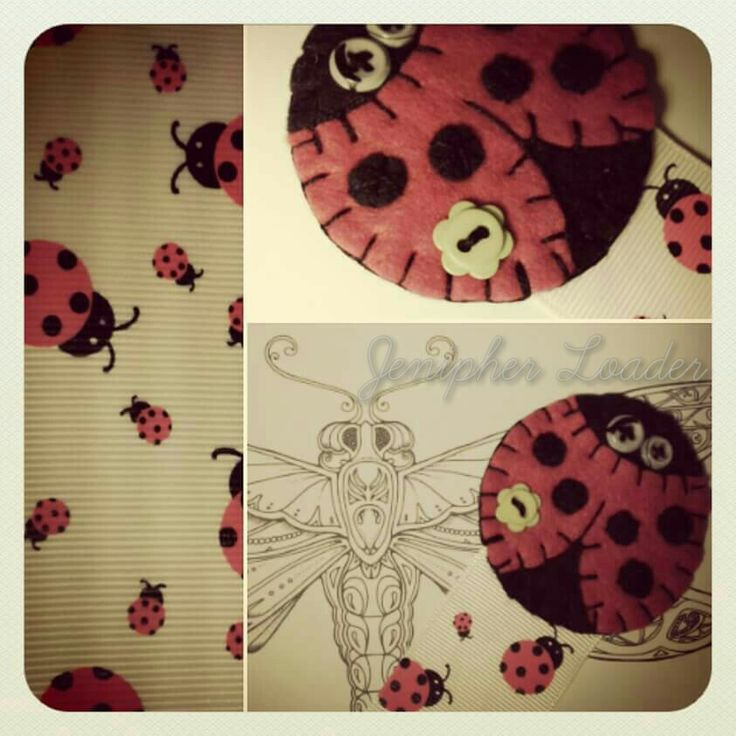 Bookmark lady bug fieltro felt feltro felting craft diy