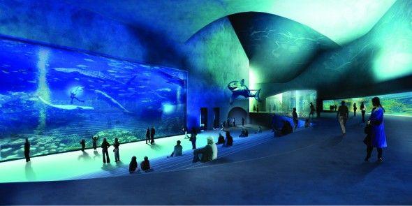 Błękitna Planeta (Den Bla Planet) to największe i najnowocześniejsze interaktywne akwarium w Północnej Europie, które zostało otwarte w marcu 2013 roku. Usytuowany 8 km do Kopenhagi na wyspie Amager obiekt to  innowacyjny projekt stworzony przez duńskie studio architektoniczne 3XN mające już na swoim koncie inne futurystyczne budynki.  Cena od 299 zł/osoba  Zapraszamy!  biurokolumb.pl