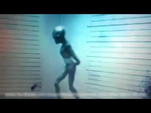 Alien Coin Discovered in Egypt set to stun the World - YouTube
