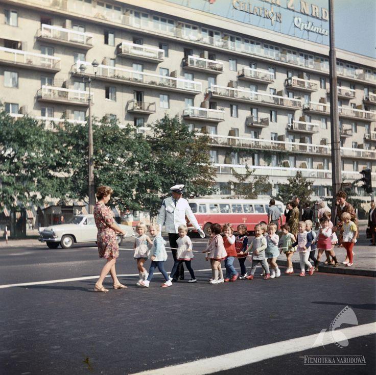 ulica Świętokrzyska 1971  #warszawa #warsaw #poland #ulica #świętokrzyska #ulica #policjant #dzieci #blok #miasto #neon #autobus