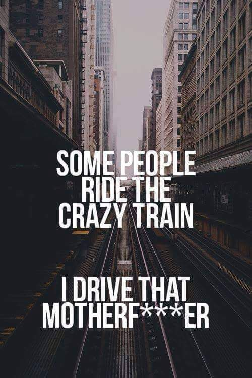 ms-woodsworld:the-disorder-of-chaos:All aboard!!*waves ticket* I'll take that motherf***ing ride!
