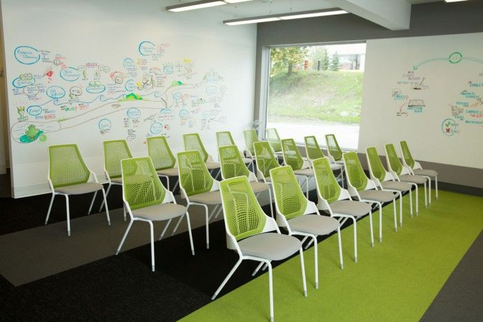 Conference room with projector wall and white board walls @ Treefrogs New Newmarket Offices