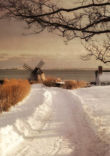 Chatham windmill in snow  by betty wiley,