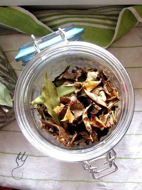 """Jesienne weekendy to idealny moment na zbieranie grzybów. Nie liczy się pogoda, czy pada deszcz czy wieje wiatr. Wyznajemy zasadę:"""" N..."""