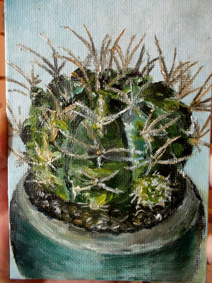 Cactus by teslimovka on Etsy