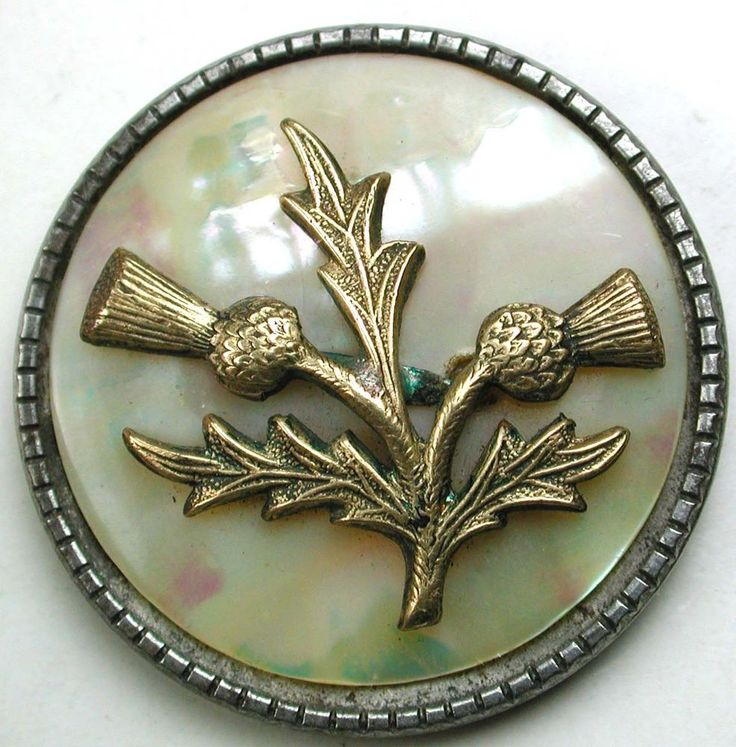 """Antique Steel Cup Button Brass Thistle Flowers over Iridescent Shell- 1 & 3/"""""""