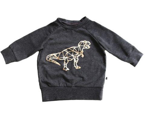 Gold Print Raglan Pullover - T-Rex - Little & Lively