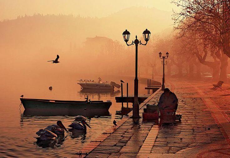 Λίμνη Ορεστιάδα. Μπροστά διακρίνεται ένα «καστοριανό καράβι» - δηλαδή η χαρακτηριστική χειροποίητη ξύλινη ψαρόβαρκα. Πολλές φορές η κουπαστή της αποτελεί αγαπημένο σημείο ξεκούρασης για τα πουλιά  Φωτ