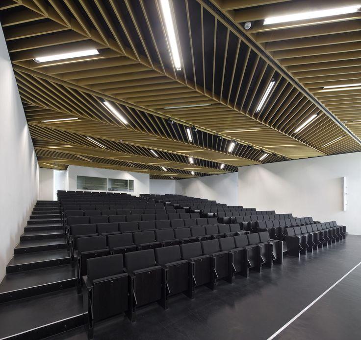 school auditorium design - Google Search