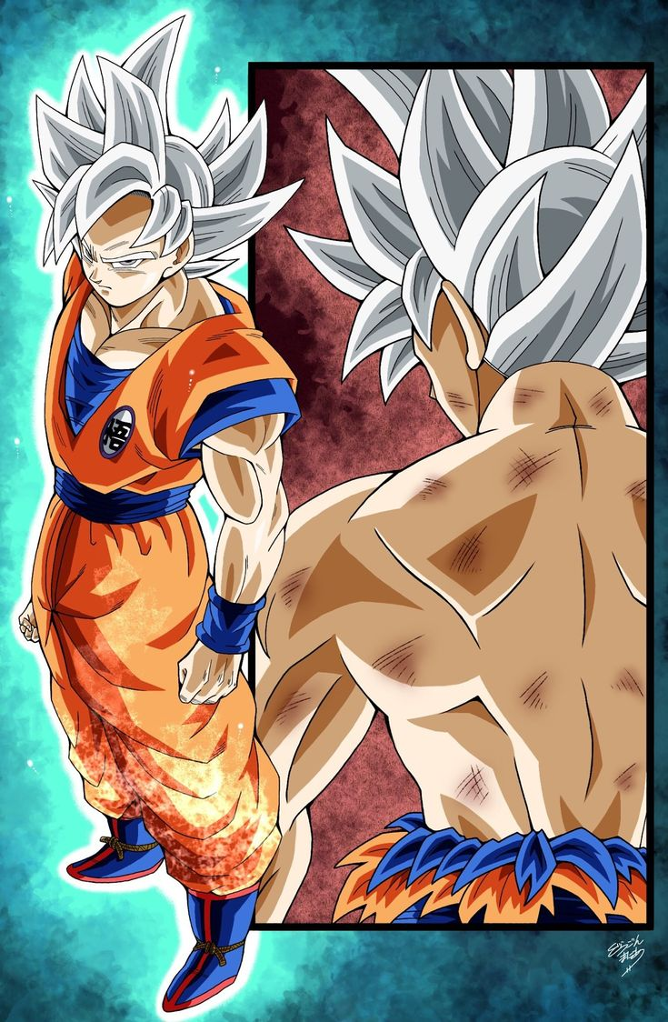 Perfected Ultra Instinct Goku