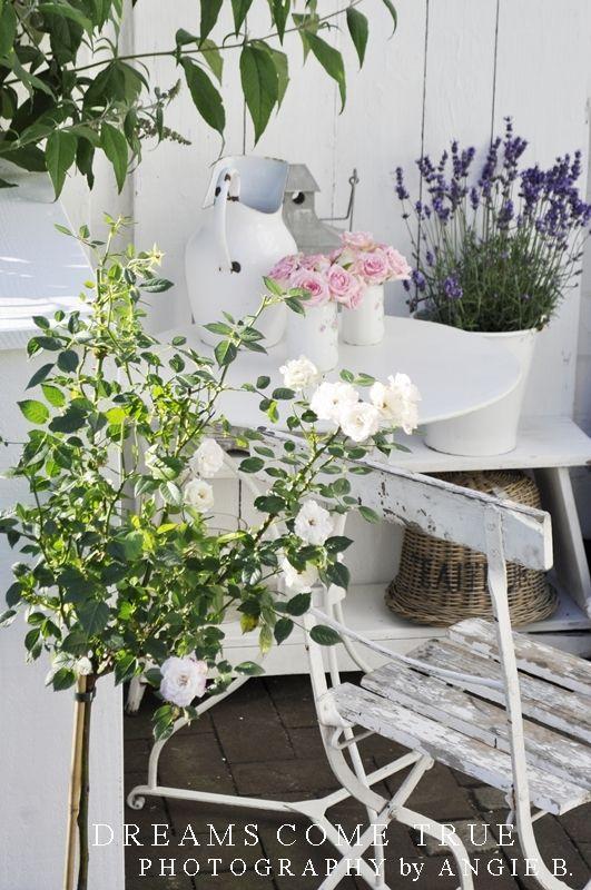Garten Garden Pinterest G 228 Rten Rosengarten Und Lavendel