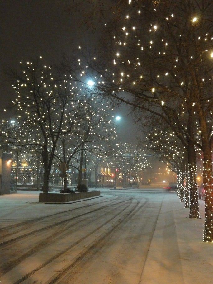 Snowy Nights in Old Town Fort Collins