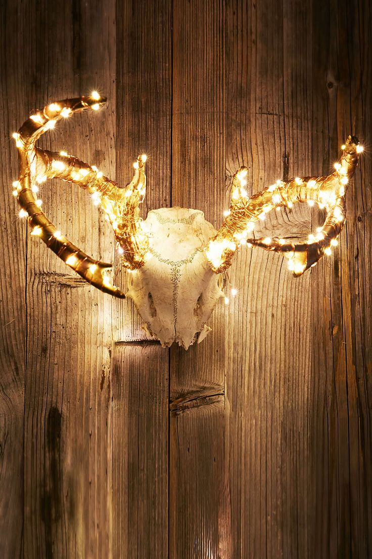 Firefly String Lights Michaels : 184 best images about Decorations & Lighting on Pinterest Embroidery hoops, Ping pong lights ...