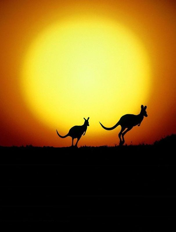 Someday I want to travel to the Australian outback #Australia