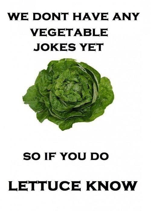 bad-puns-15.jpg (500×696)