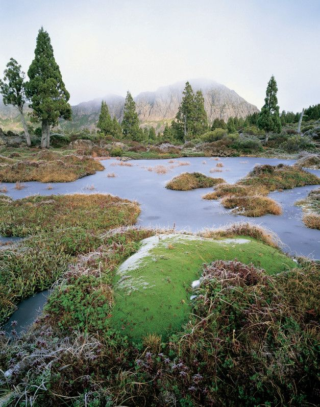 This is Walls of Jerusalem in Tasmania. Tasmania a place to enjoy breathtaking scenery.  Check out Tasmania accommodation when planning your holiday http://www.ozehols.com.au/holiday-accommodation/tasmania #VisitTas #VisitTasmania #Tasmania @OzeHols - Holiday Accommodation - Holiday Accommodation