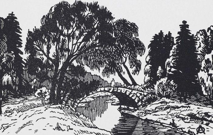 Вербы около Ново-Cильвийского моста 1923 (700x446, 174Kb)