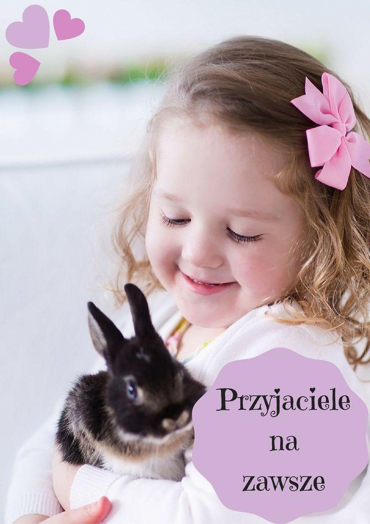 Już przedszkolaki chcą hodować zwierzęta. W dziecięcych marzeniach pojawiają się psy, koty, żółwie, świnki morskie, chomiki, myszki, szczurki, rybki, papugi, kanarki i króliki. Jaki zwierzak będzie najlepszym przyjacielem dziecka? Przeczytajcie i zdecydujcie sami.