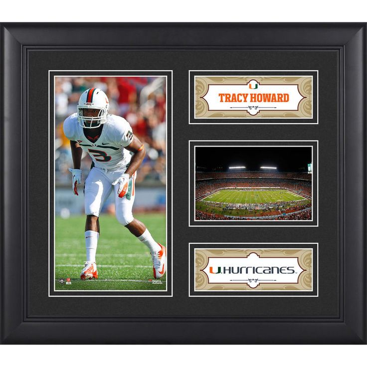 "Tracy Howard Miami Hurricanes Fanatics Authentic Framed 15"" x 17"" Collage"