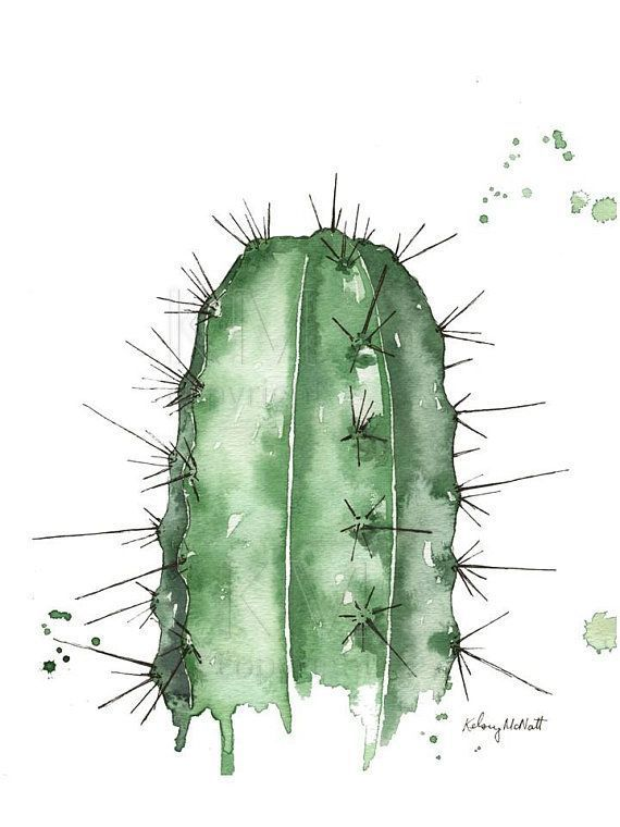 The Pointed Cactus, Watercolour Wall Art, Botanical Wall Artwork of Cacti, Green, Large Poster, Watercolor, 8×10, 11×14 – Andrea Jacoby