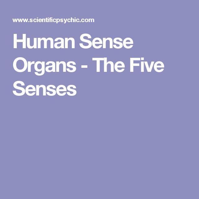 Human Sense Organs - The Five Senses