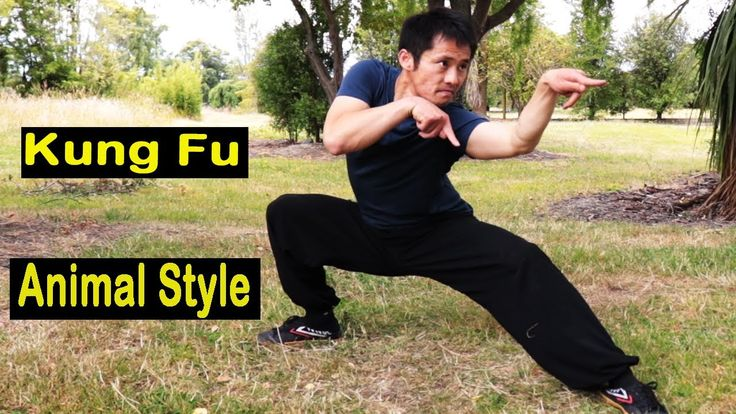 11++ Kung fu animal styles ideas in 2021