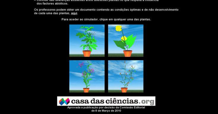Simulador de desenvolvimento de plantas virtuais  Material Premiado em 2010 - Prémio de Excelência.