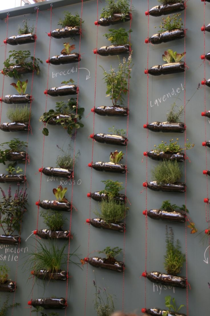 Herb wall, delicious. woonbeurs 2011 #kruiden #herbs