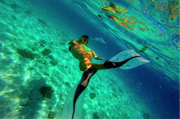 Snorkeling in Fiji!!  #escapenormal #thisisgradtrip #tripofalifetime