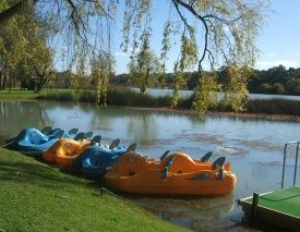 Water Bee & Canoe Hire - BIG4 Renmark Riverfront Holiday Park