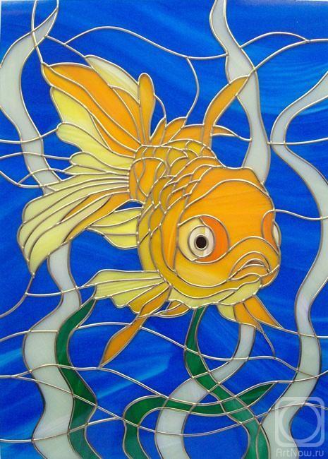 Vyachina Natalia.  Akvaryum balığı